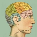 The mystery of the human brain
